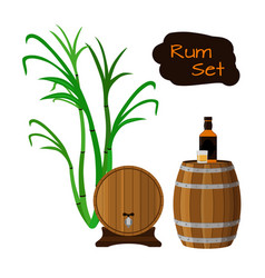 Rum set sugar cane helm barrels glass bottle of vector