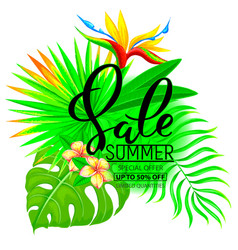 summer sale composition with flowers and leaves vector image