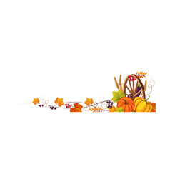 thanksgiving banner with cornucopia and space for vector image