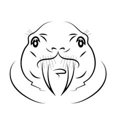 Walrus Head vector image