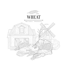 Wheat Natural Product Logo Hand Drawn Realistic vector