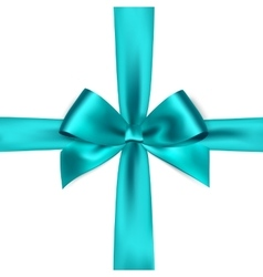 Shiny blue satin ribbon on white background vector image