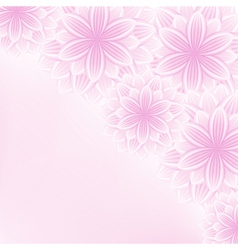 Beautiful lace floral pink background with flowers vector