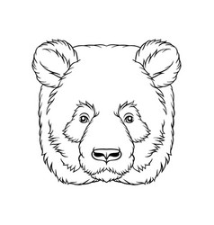 Black and white sketch of panda bears head face vector