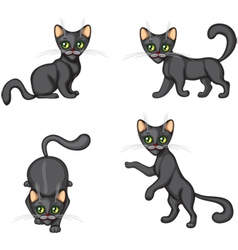 Black Kitten in different poses vector image