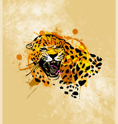colored hand sketch head roaring jaguar vector image