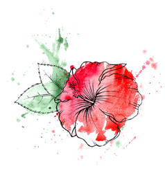 hand drawn red hibiscus flower vector image