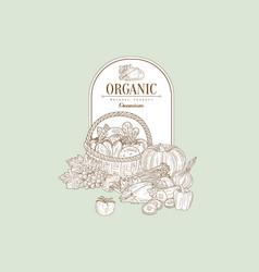 organic banner vector image