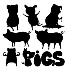 set of pigs vector image