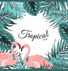 Tropical border frame jungle leaves flamingo birds vector