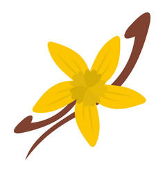 vanilla pods and flower icon isolated vector image