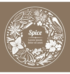 background with herbs and spices vector image vector image