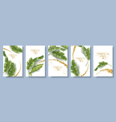 banners set of banana tropic leaf vector image