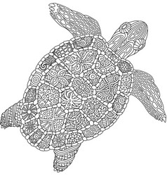 coloring book page with turtle on white background vector image