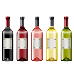 Different colors of wine bottles vector