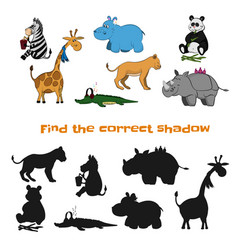 find correct shadow kids game zoo animals vector image