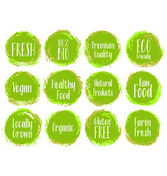 green organic labels bio emblems vector image