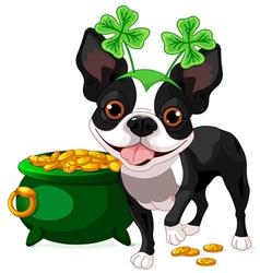 Boston Terrier celebrates Saint Patrick Day vector image vector image