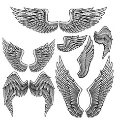set of monochrome bird wings of different shape in vector image