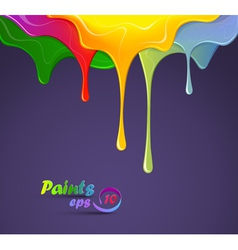 Paints vector image vector image
