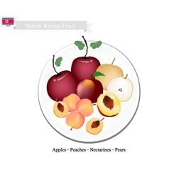 Apple Peach Nectaeines Pear are Popular Fruits vector
