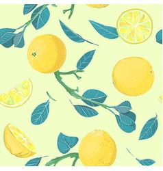 botanical hand drawn citrus lemon or orange vector image