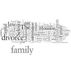 Divorce lawyer in houston vector
