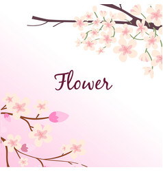 flower sakura branch pink background image vector image