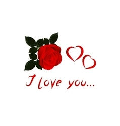 Image Valentine with red rose on white vector image