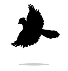Jay bird black silhouette anima vector