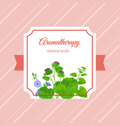 aromatherapy medical herbs label design vector image