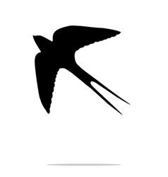 swallow bird black silhouette anima vector image