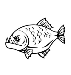 Angry piranha vector image