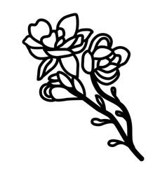 cluster flower floral hand drawn design sign vector image