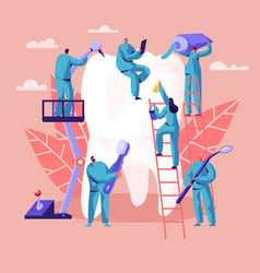 dentist character care big white tooth dental vector image