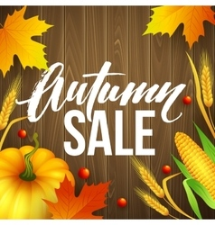 design banner autumn sale fall poster design vector image