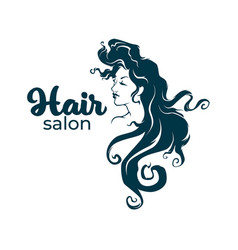 Hairdresser and hairstyle salon logo label emblem vector