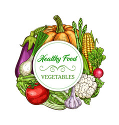 healthy vegetables and greens sketch banner vector image
