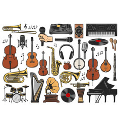 music instruments musical notes and equipment vector image