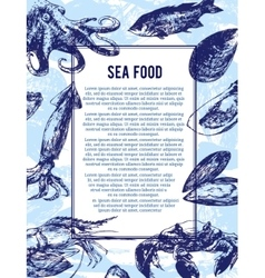 Sea food banner or flyer good as a template of vector