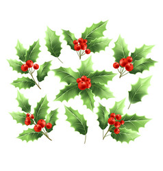 Christmas holly branches realistic vector