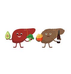 healthy and unhealthy liver cartoon characters vector image