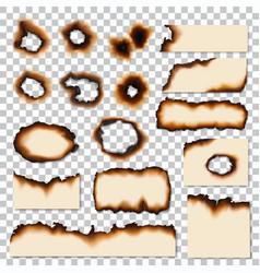 holes and burnt edges paper sheet pieces vector image