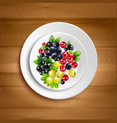 Berry plate realistic vector