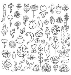 black and white fantasy flowers and leaves vector image