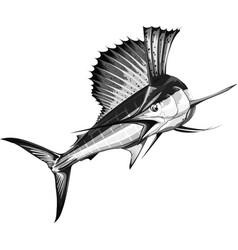 Black sailfish vector