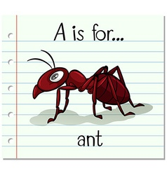 Flashcard letter A is for ant vector