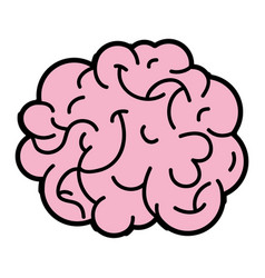 Human brain anatomy to creative and intellect vector
