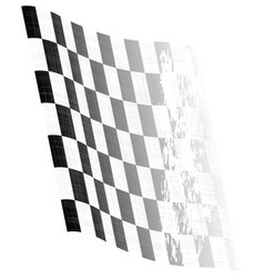 waving chequered flag vector image