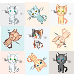background on a cat theme vector image
